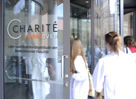 deckblatt dissertation charite